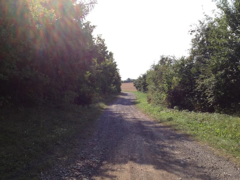 Wander- und Radweg.