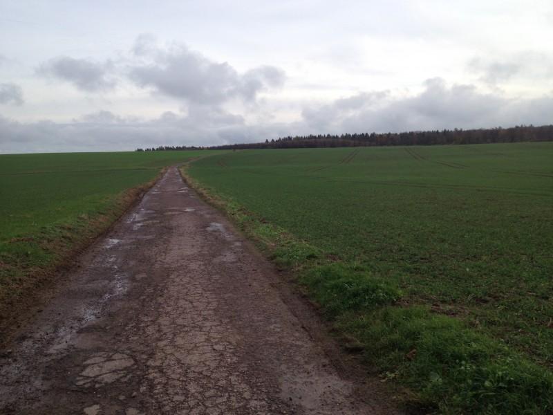 Straße von Annarode nach Ahlsdorf.
