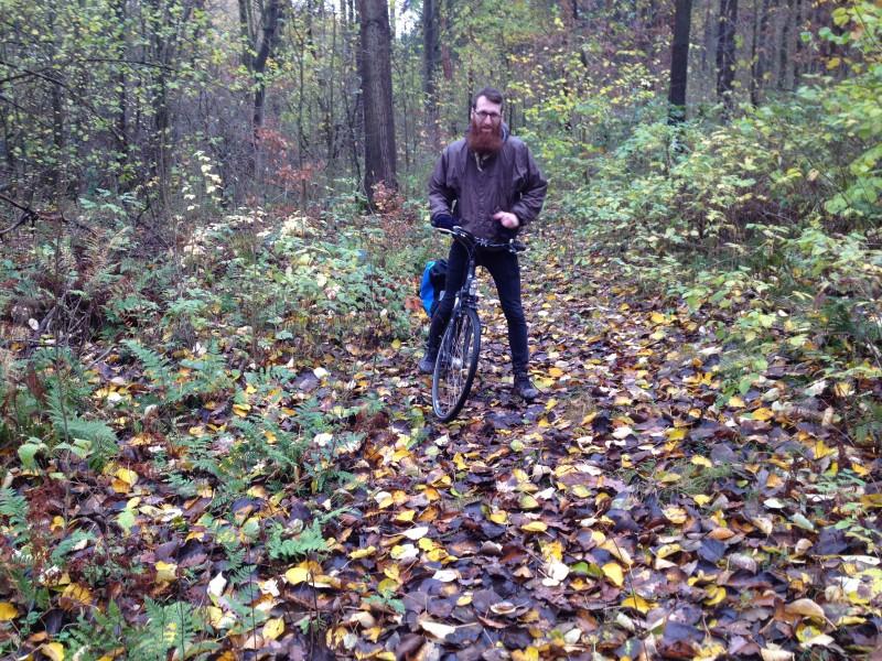 Schlecht befahrbarer Waldweg.